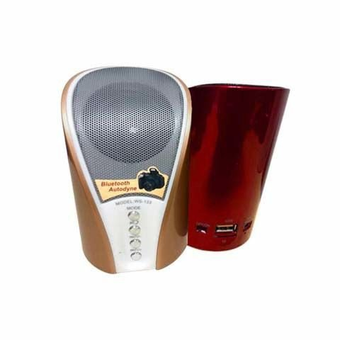 LOA BLUETOOTH MINI SPEAKER WS-133