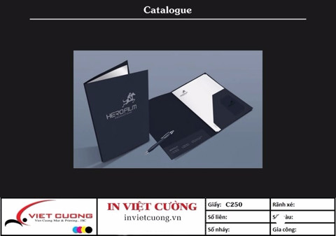 In catalogue mẫu 1