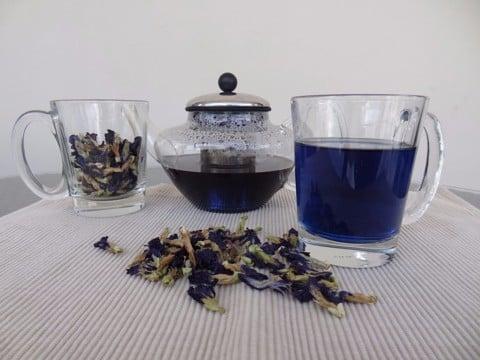butterfly pea tea синий чай анчан