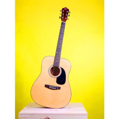 CHATEAU C08-W640 acoustic guitar