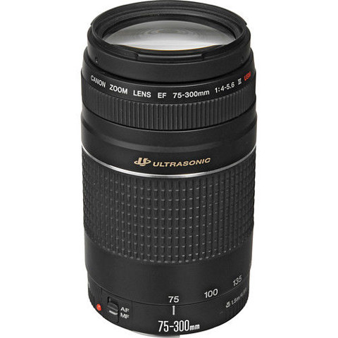 Canon EF 75-300mm F/4.0-5.6 III Lens for Digital Rebel T4i T3i T2i.. 50D 10D 7D