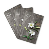 THEFACESHOP REAL NATURE LILY FACE MASK (SET 3 PCS)