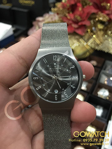 SKAGEN Titanium Stainless Steel Mesh Men's Watch