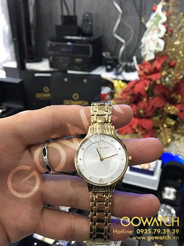 SKAGEN Anita Silver Dial Gold-tone Ladies Watch