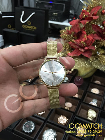 SKAGEN Anite Silver Dial Gold-tone Mesh Ladies Watch