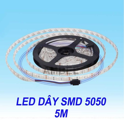 den-led-day-5050-5m
