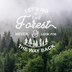 Let's go to the forest - Xám