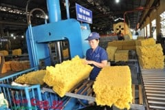 "Brand name ""Vietnamese Rubber"" reach out international market"