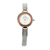 SKAGEN LADIES WATCH - Sk41