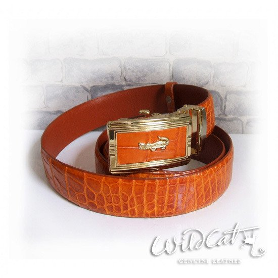 80122015 - PLAIN ALLIGATOR BELT SIZE M