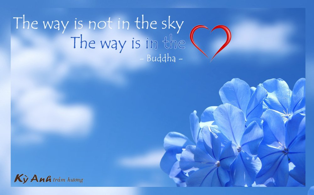 The way is not the sky