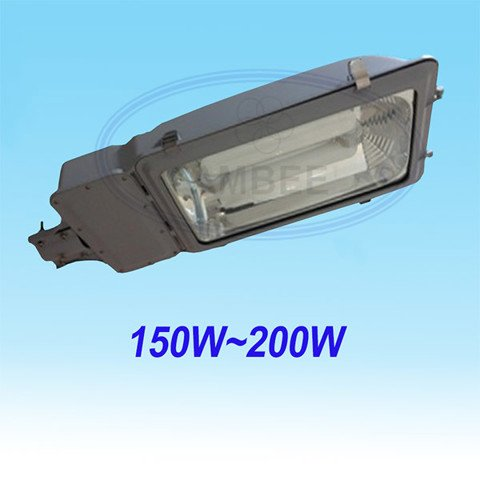 Streetlight Induction Lamp LD101/150W~200W