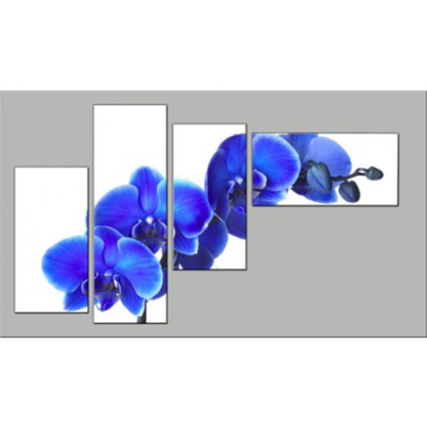 Kết quả hình ảnh cho Tranh bộ hoa lan xanh